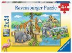 Puzzle 2×24 pièces – Bienvenue au zoo