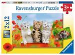 Puzzle 2×12 pièces – Chatons