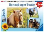 Puzzle 3×49 pièces – Adorables poneys